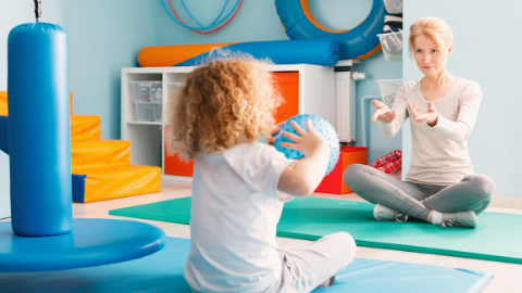 Physiotherapy in Autism Spectrum Disorder