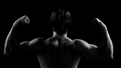 The Ultimate Guide to Shoulder Health Workshop